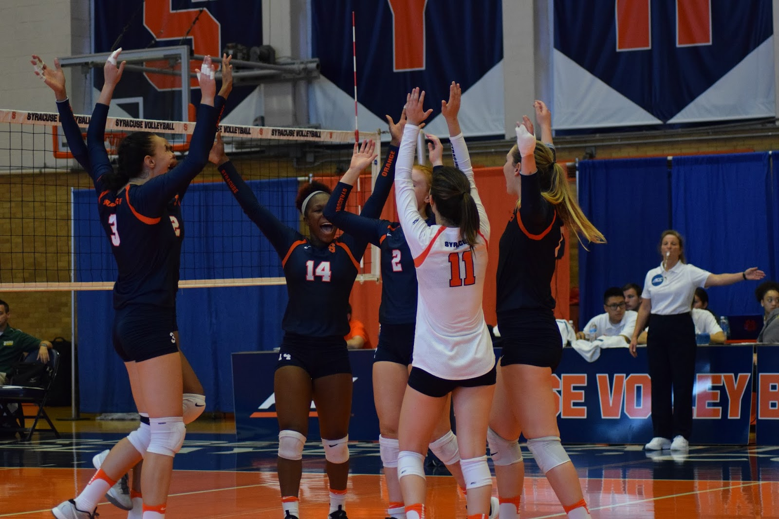 Orange Volleyball Breaks Through with Win over Siena