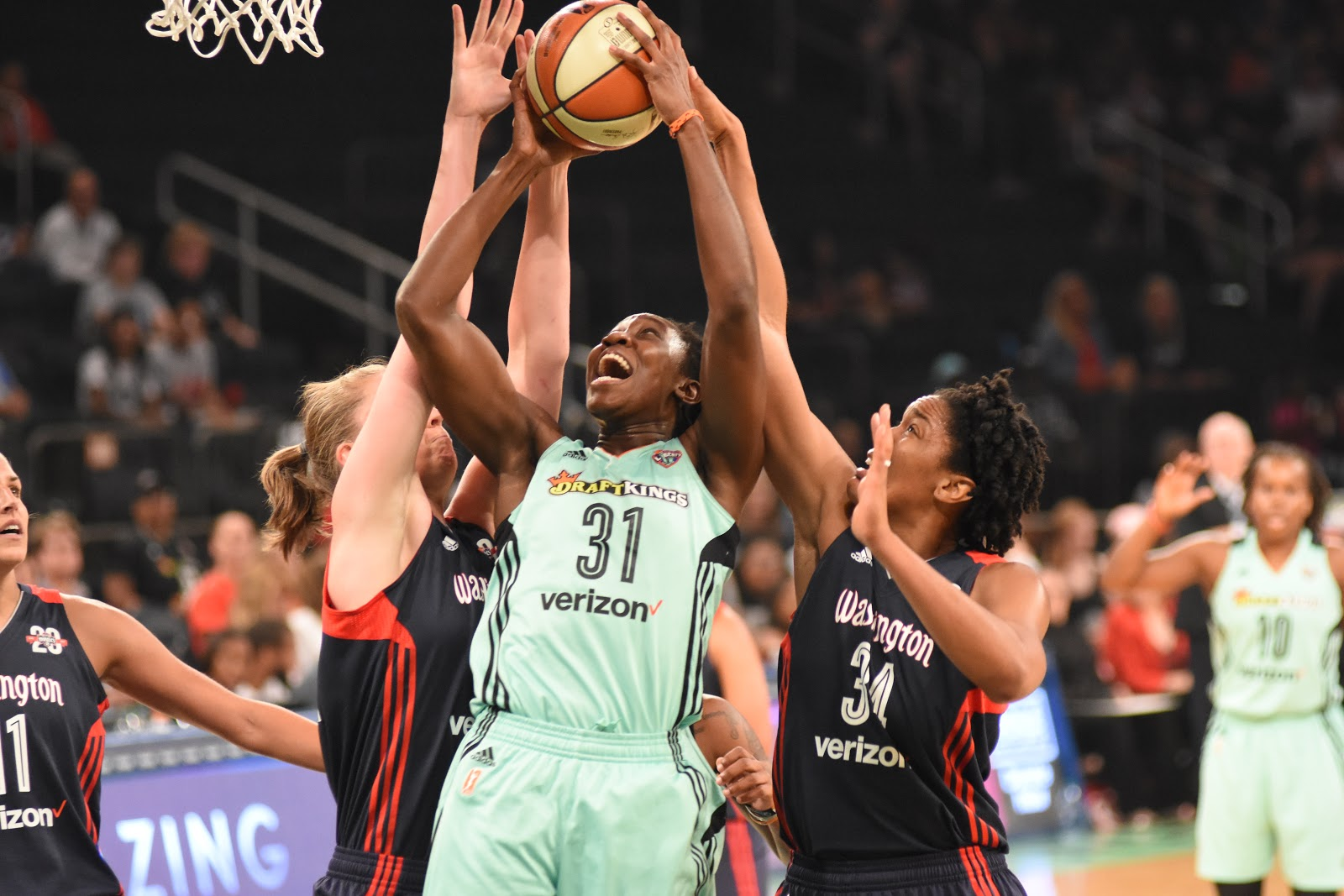 New York Liberty: Scenes from a Season